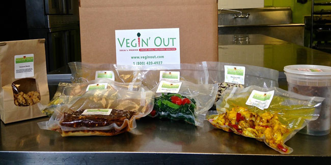 vegin out subscription box