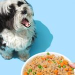 petplate dog and meal