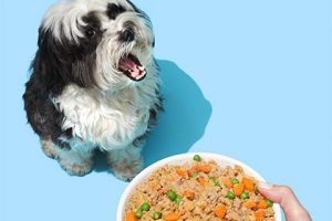 petplate dog and meal