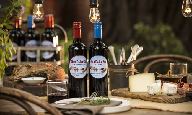 Revel Wine Club red wine
