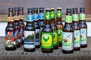 beer club beer bottle