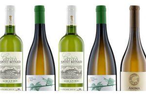 gold medal wine bottles wine on white background